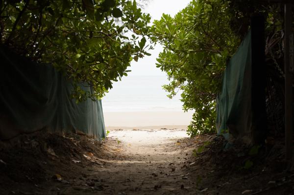 海への抜け道
