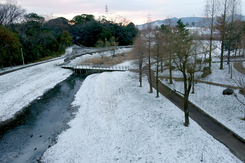 山田池公園 雪