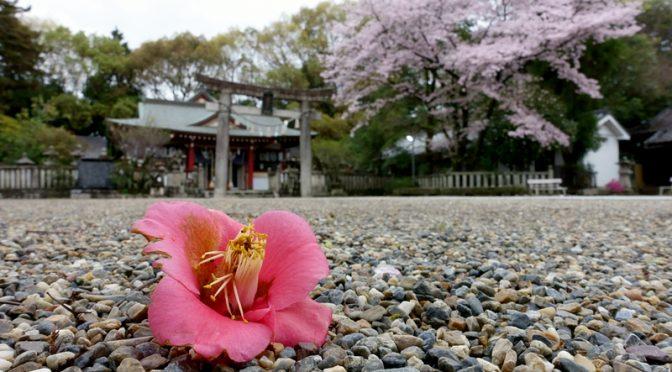 椿 機物神社