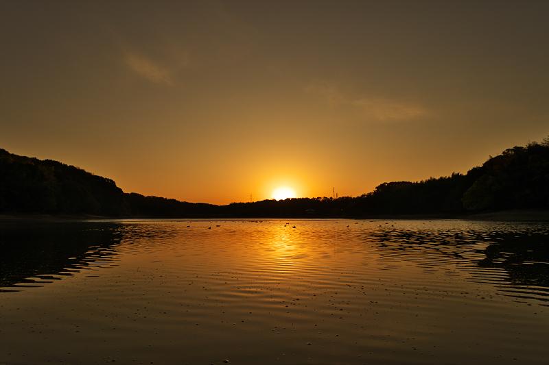 山田池 夜明け