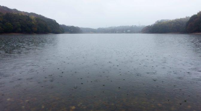 山田池 雨